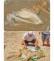 מחדל המוות של הכלבה בחוף ארגמן